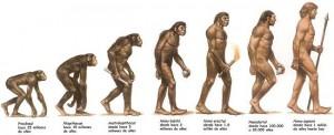 evoluciongfhhj