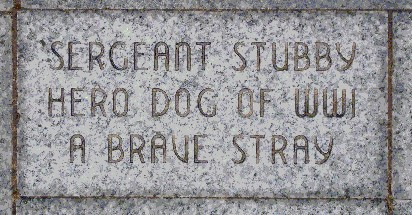 El perro sargento Stubby