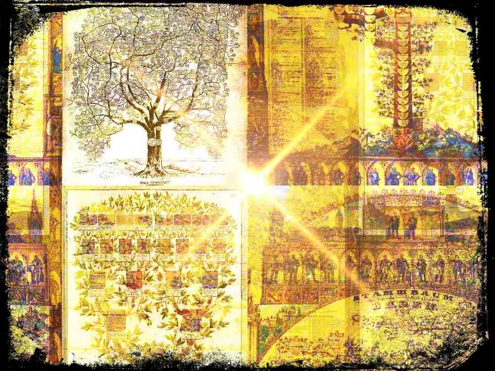 Historia y usos de la genealogía y los árboles genealógicos